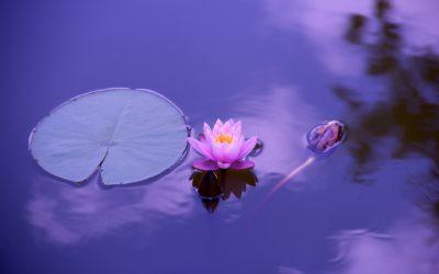 Spiritualità: rispondi alla chiamata del tuo io interiore