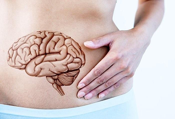 Intestino: scopri perché è come un secondo cervello
